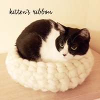 kitten's ribbon